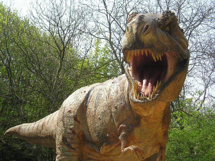 dinozaurs81.jpeg