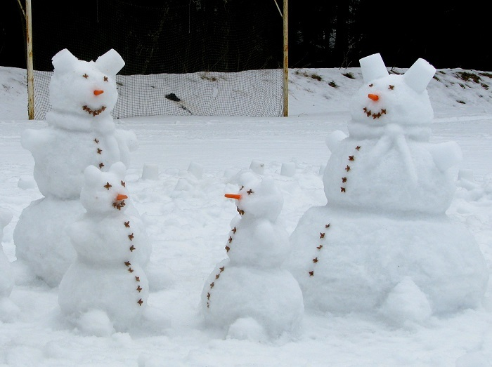 sniegaviri-jpeg.jpeg